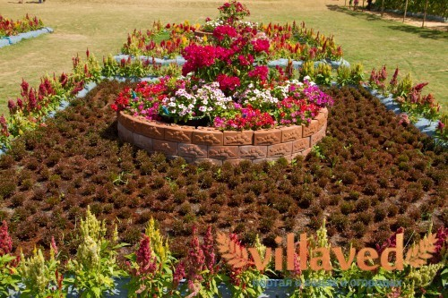 Использование цветка в композиции