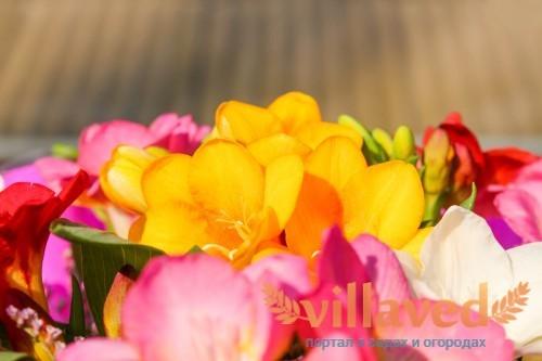 Букеты с цветком получаются очень красивыми