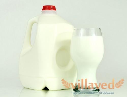 Молочная кислота для кроликов