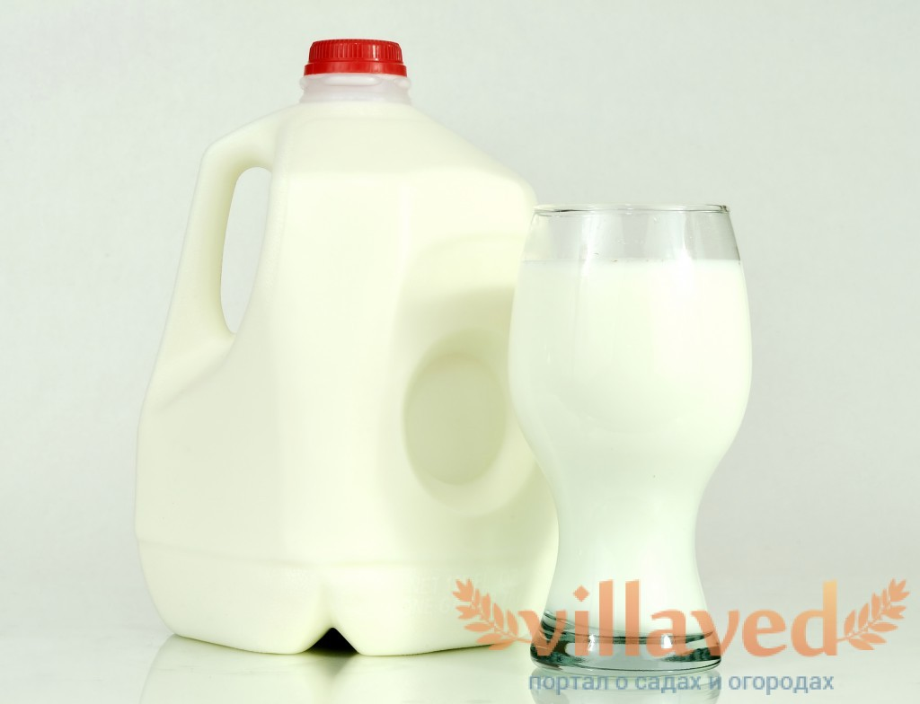 инструкция по применению молочной кислоты для кроликов - фото 3
