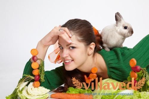 Витамины для кроликов