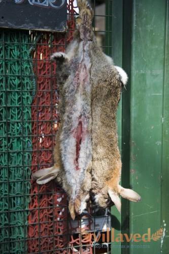 Забой кроликов