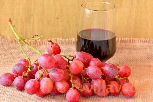 Виноград анюта описание сорта фото