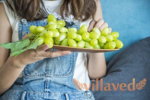 Газообразование от винограда