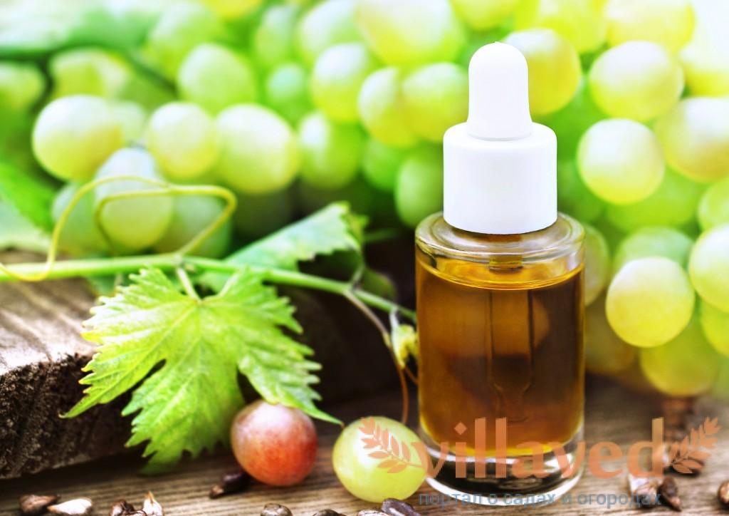 Как сделать виноградное масло в домашних условиях фото 200