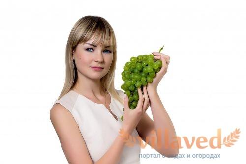 Виноград при диете и похудении