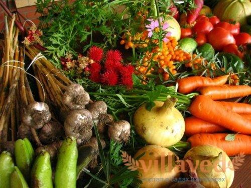 Органическое земледелие что это