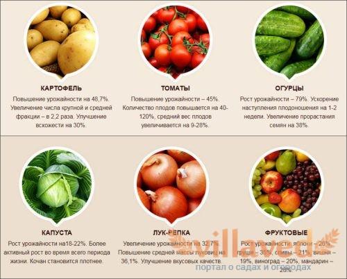 Удобрение Biogrow какой эффект