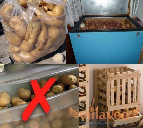 Как хранить картофель в холодильнике