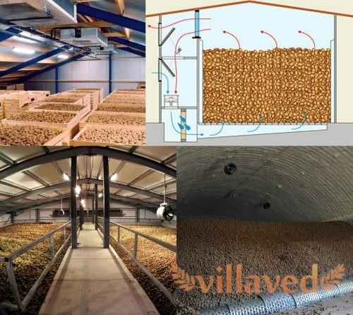 Овощехранилище для картофеля