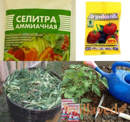 Органические удобрения для помидоров