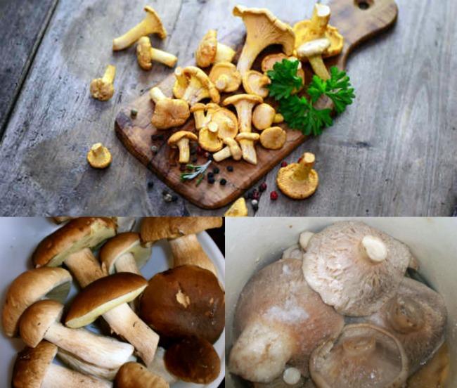 Сухая засолка грибов